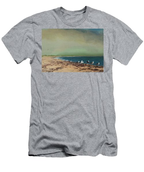 Gulls On The Seashore Men's T-Shirt (Athletic Fit)