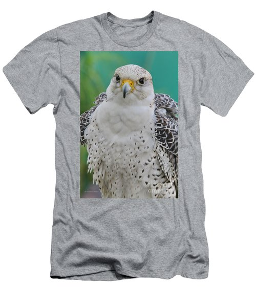 Gyrfalcon Men's T-Shirt (Slim Fit) by Deborah Benoit