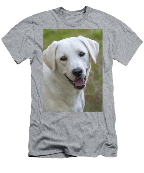 Happy Lab Men's T-Shirt (Slim Fit) by Stephen Anderson
