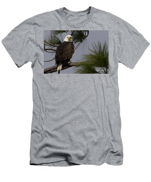 Harriet The Bald Eagle Men's T-Shirt (Athletic Fit)