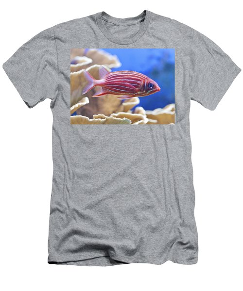 Hawaiian Squirrelfish Men's T-Shirt (Athletic Fit)