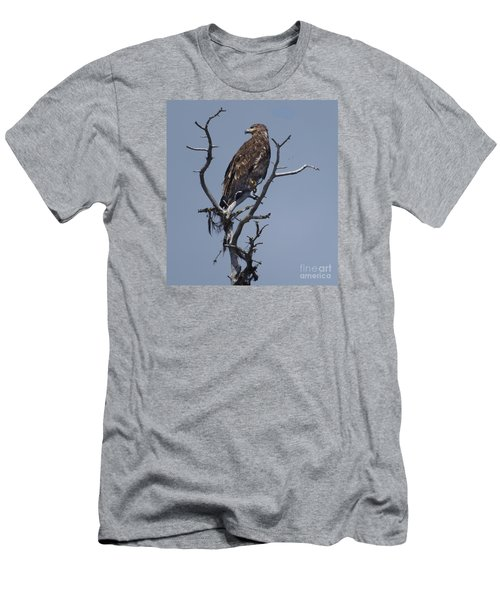 Hawk Eye Men's T-Shirt (Athletic Fit)