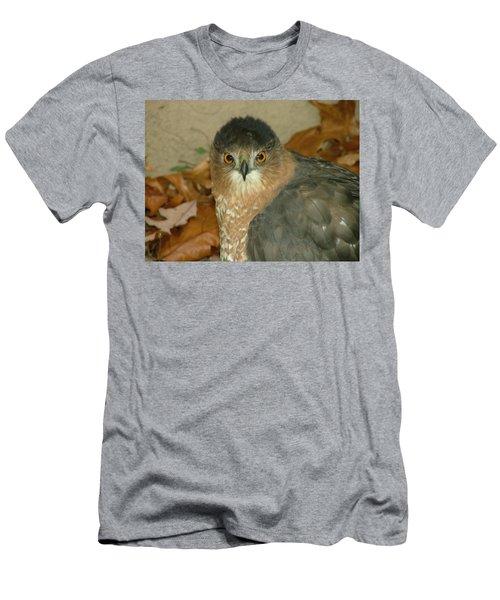 Hawk Eyes Men's T-Shirt (Athletic Fit)