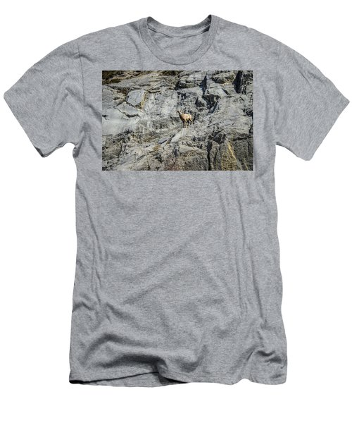 Big Horn Sheep Coming Down The Mountain  Men's T-Shirt (Athletic Fit)