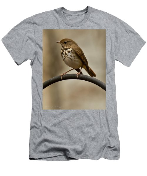 Men's T-Shirt (Slim Fit) featuring the photograph Hermit Thrush by Robert L Jackson