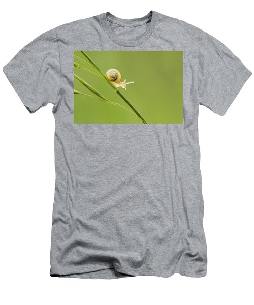 High Speed Snail Men's T-Shirt (Slim Fit) by Mircea Costina Photography