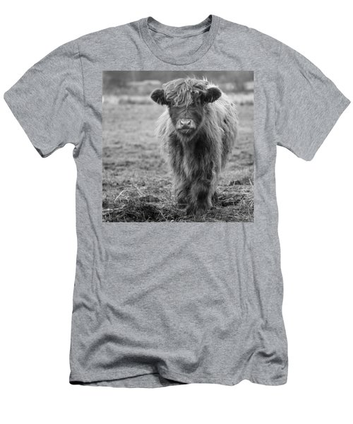 Highland Calf Men's T-Shirt (Slim Fit) by Sonya Lang