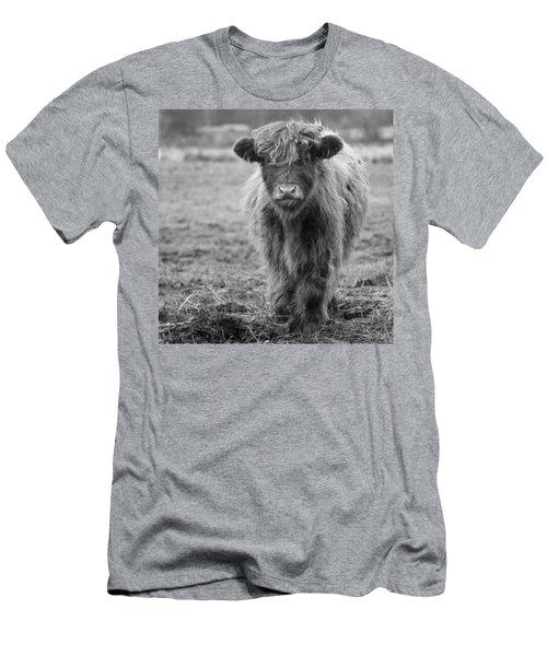 Highland Calf Men's T-Shirt (Slim Fit) by Sonya Lang