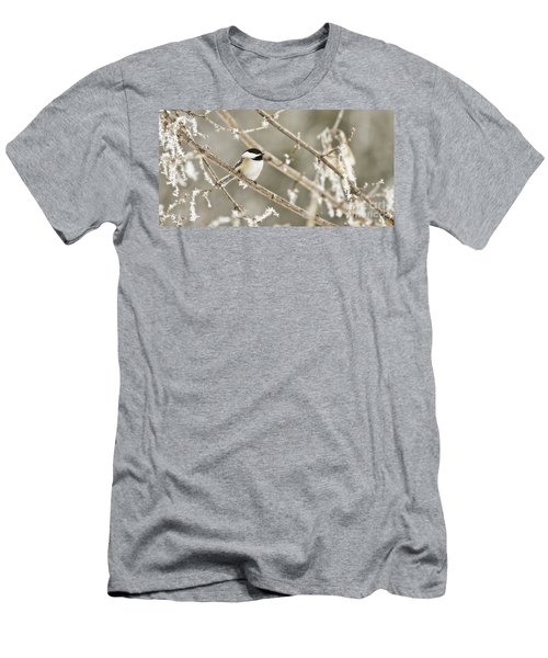 Hoarfrost Morning Men's T-Shirt (Athletic Fit)