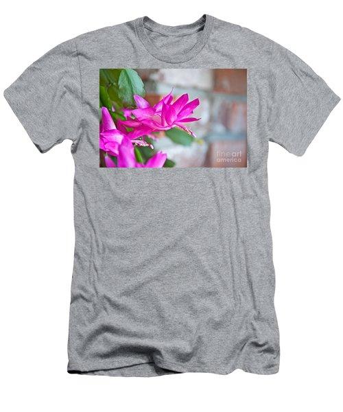 Hot Pink Christmas Cactus Flower Art Prints Men's T-Shirt (Slim Fit) by Valerie Garner