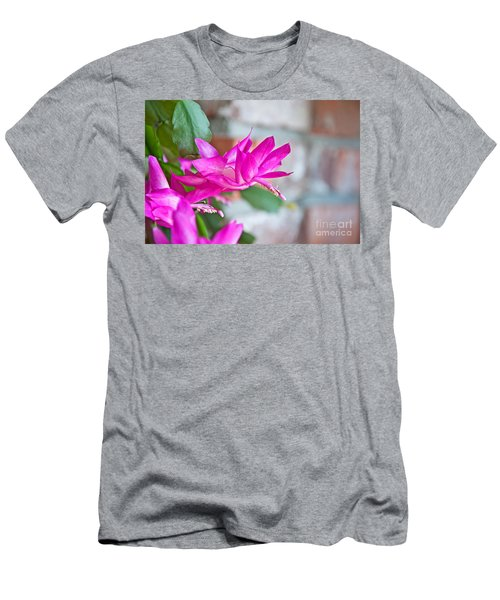Hot Pink Christmas Cactus Flower Art Prints Men's T-Shirt (Athletic Fit)