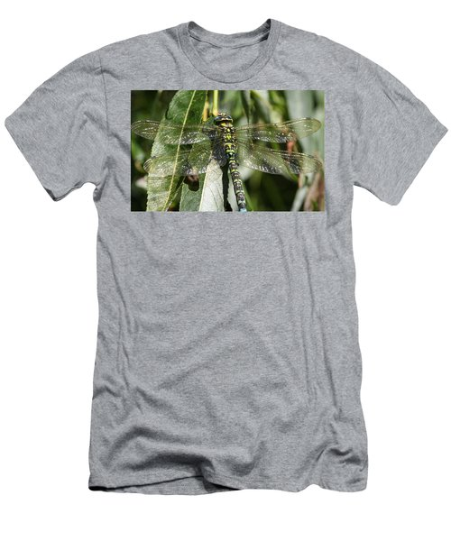 Huge Dragon-fly In Detail. Men's T-Shirt (Athletic Fit)