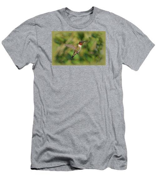 Hummingbird In Flight Men's T-Shirt (Slim Fit) by Sandy Keeton