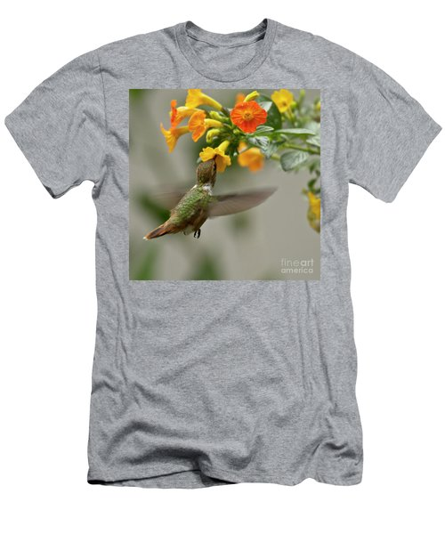 Hummingbird Sips Nectar Men's T-Shirt (Athletic Fit)