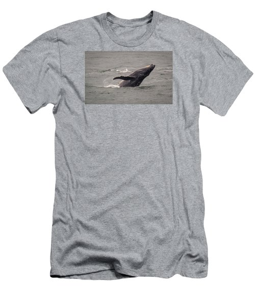 Humpback Whale Breaching Men's T-Shirt (Slim Fit) by Janis Knight