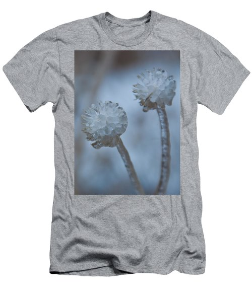 Ice-covered Winter Flowers With Blue Background Men's T-Shirt (Athletic Fit)