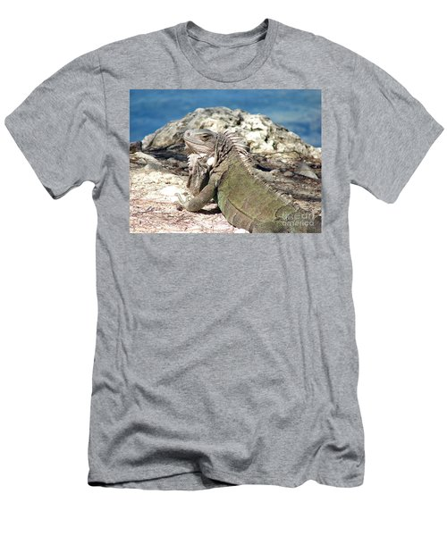 Iguana In The Sun Men's T-Shirt (Athletic Fit)