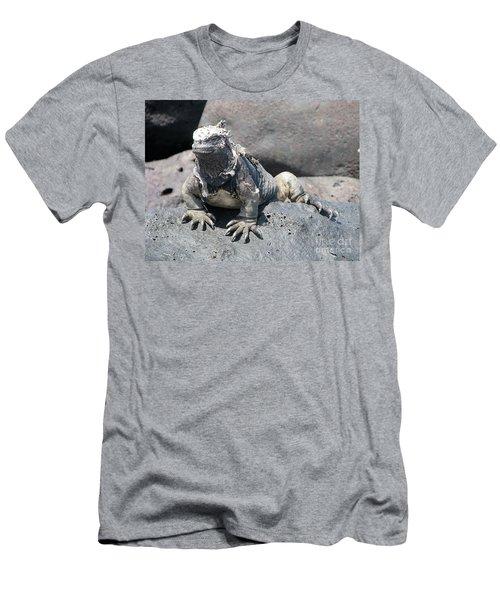 Iguana Or Prehistory Survivor Men's T-Shirt (Athletic Fit)