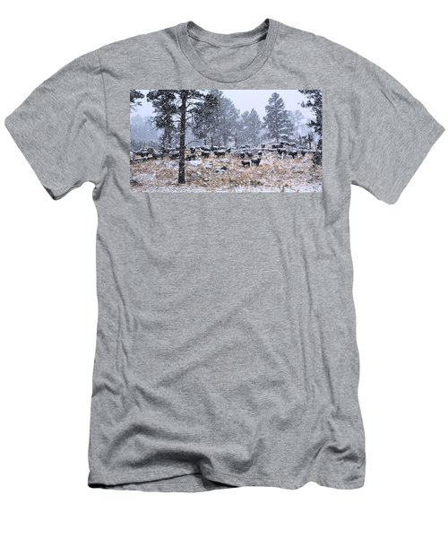 January Snow Men's T-Shirt (Athletic Fit)