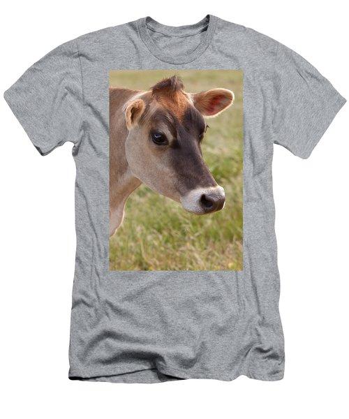 Jersey Cow Portrait Men's T-Shirt (Athletic Fit)