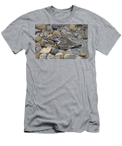 Killdeer And Young Men's T-Shirt (Athletic Fit)