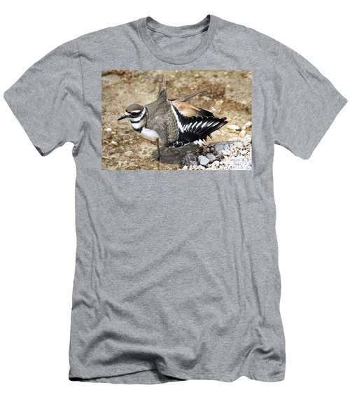 Killdeer Fakeout Men's T-Shirt (Athletic Fit)