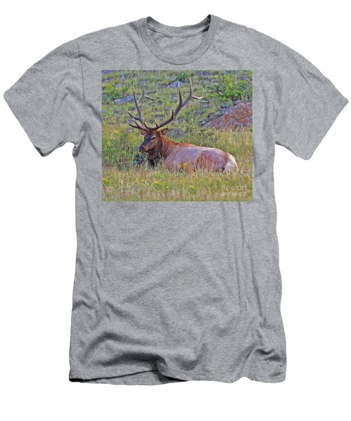 King Of The Meadow Men's T-Shirt (Athletic Fit)