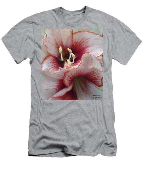 Kisses  Men's T-Shirt (Athletic Fit)