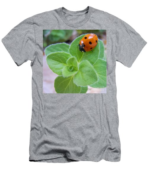 Men's T-Shirt (Slim Fit) featuring the photograph Ladybug And Oregano by Robert ONeil