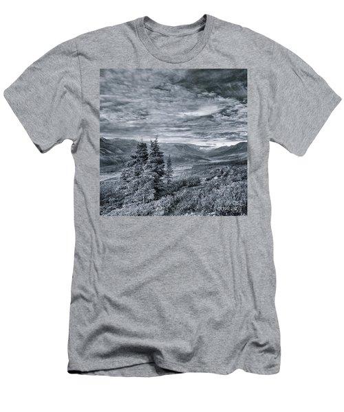 Land Shapes 18 Men's T-Shirt (Athletic Fit)