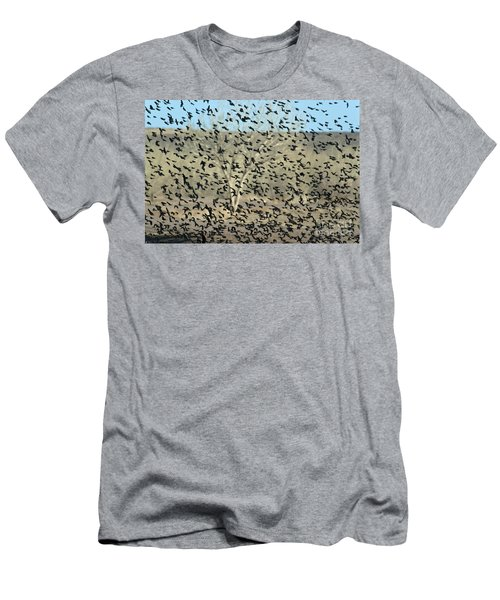 Large Flock Of Blackbirds And Cowbirds Men's T-Shirt (Athletic Fit)