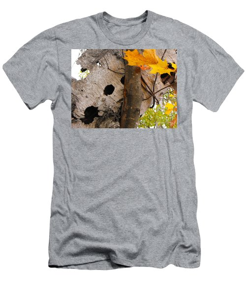 Leaning Birch Men's T-Shirt (Athletic Fit)