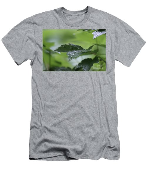 Leaves In The Rain Men's T-Shirt (Athletic Fit)