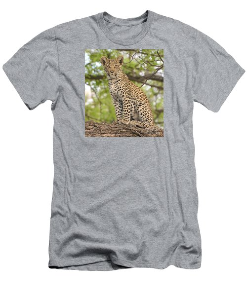 Leopard Cub Gaze Men's T-Shirt (Athletic Fit)