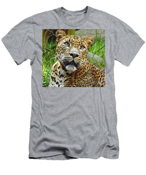 Leopard Face Men's T-Shirt (Slim Fit) by Clare Bevan