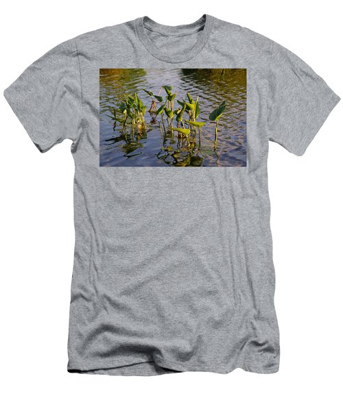 Lillies In Evening Glory Men's T-Shirt (Athletic Fit)