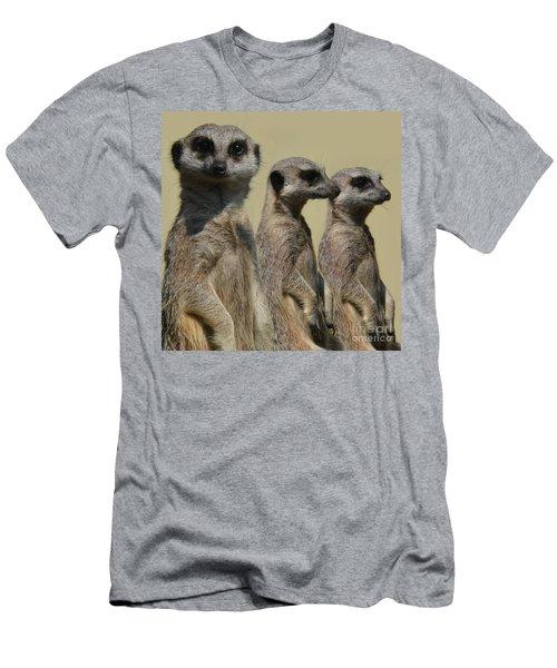 Line Dancing Meerkats Men's T-Shirt (Slim Fit) by Paul Davenport