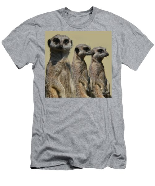 Line Dancing Meerkats Men's T-Shirt (Athletic Fit)