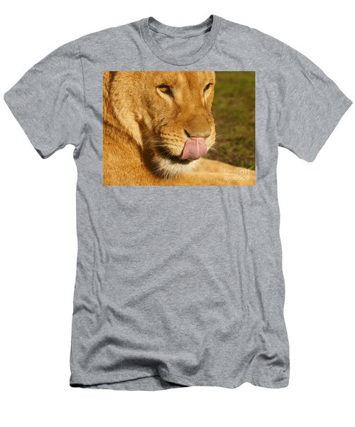Lion Licking Her Nose Men's T-Shirt (Athletic Fit)