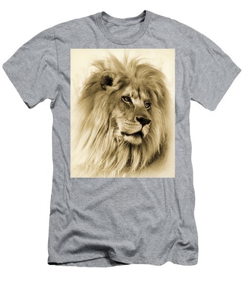Lion Men's T-Shirt (Slim Fit) by Swank Photography