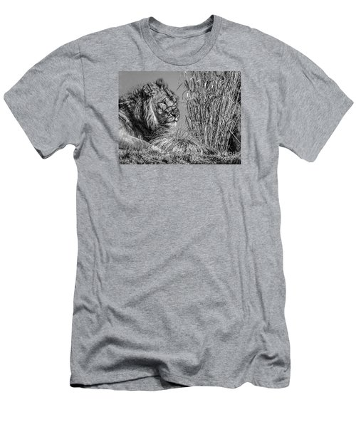 Watching Intently Men's T-Shirt (Athletic Fit)