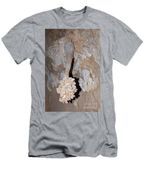 Lions Tail Carlsbad Caverns National Park Men's T-Shirt (Athletic Fit)