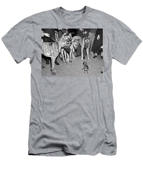 Little Dog Meets Big Dogs Men's T-Shirt (Athletic Fit)
