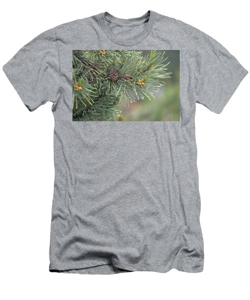 Lodge Pole Pine In The Fog Men's T-Shirt (Athletic Fit)