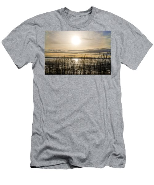 Looking At Wales Through The Grass Men's T-Shirt (Athletic Fit)