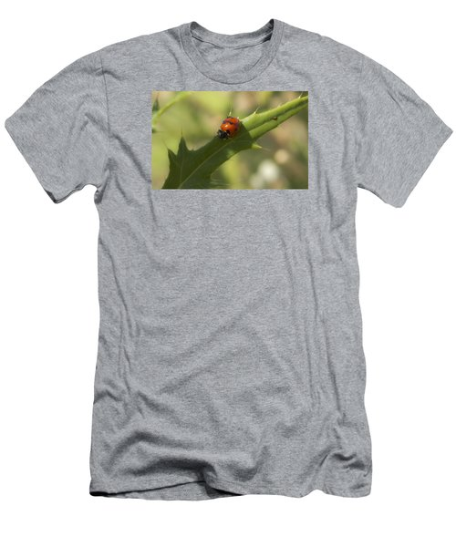 Lovely Lady Bug Men's T-Shirt (Slim Fit) by Shelly Gunderson