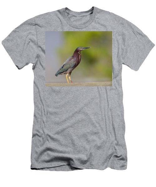 Loving The Sun Men's T-Shirt (Athletic Fit)