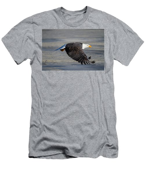 Male Wild Bald Eagle Ready To Land Men's T-Shirt (Athletic Fit)