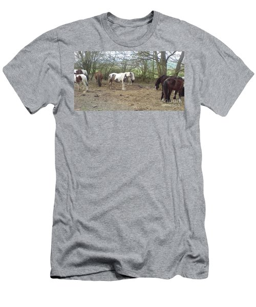 May Hill Ponies 1 Men's T-Shirt (Slim Fit) by John Williams