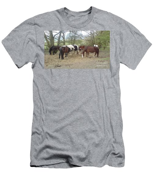 May Hill Ponies 3 Men's T-Shirt (Slim Fit) by John Williams